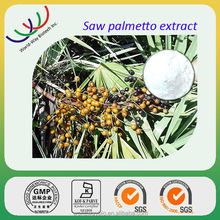 GMP factory supply prostate medicines natural saw palmetto fruit extract palm fatty acid