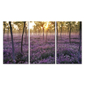 Landscape Lavender Canvas Painting/Multi-Panel Canvas Wall Art /Creative Canvas Art Prints Flowers on Canvas