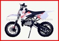 49CC 2 STROKE KIDS MINI DIRT BIKE
