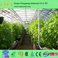 Mechanical Stretch Plastic Film Greenhouses For