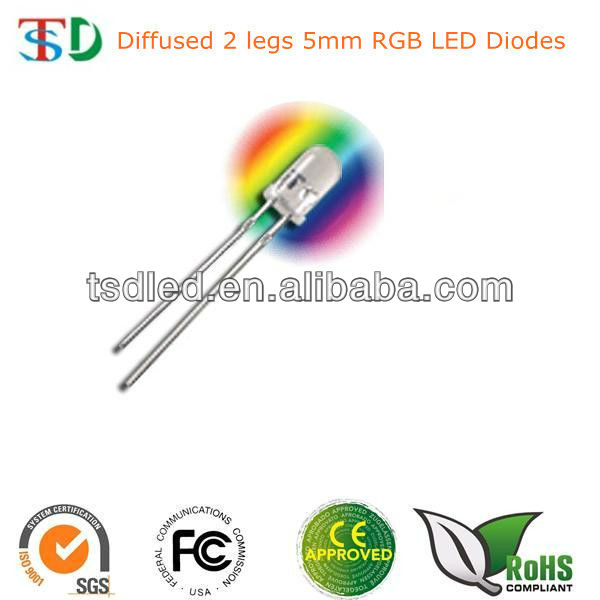 2 legs RGB LED 5mm diffused flashing led