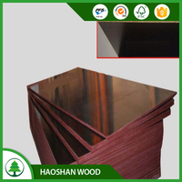 Linyi Factory Film Faced Shuttering Plywood