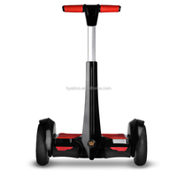 2 wheel self balancing electric standing scooter