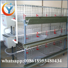 3tiers h type broiler chicken cages 128 layers h type chicken breeding cage