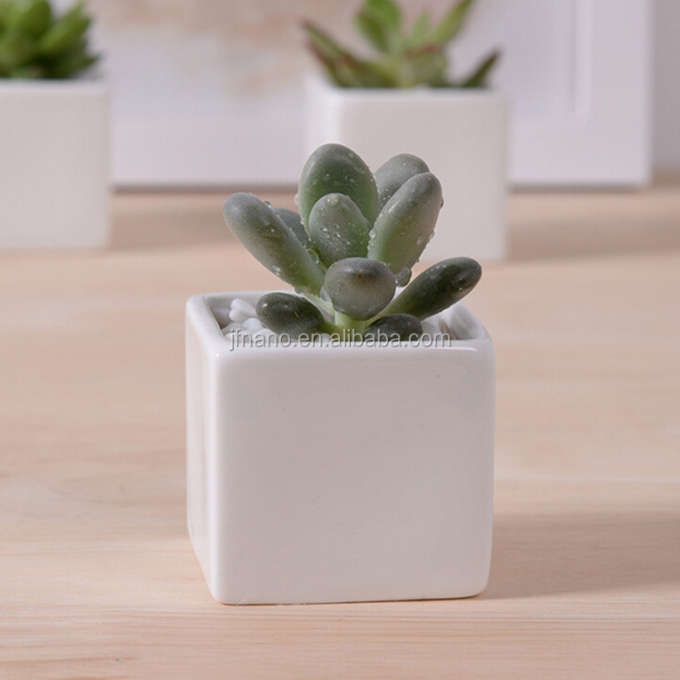 List Manufacturers Of Small Ceramic Planter Buy Small
