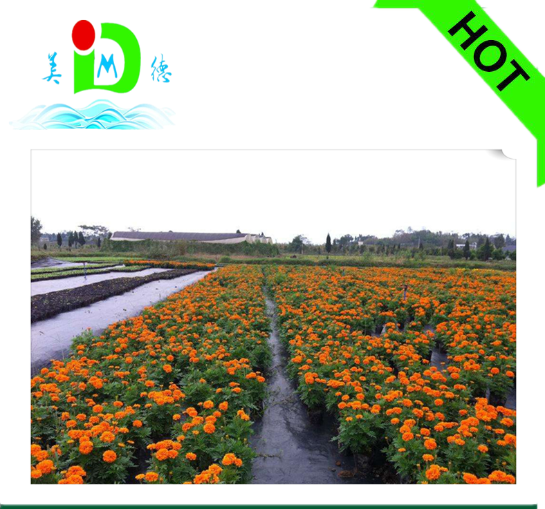 PP Spunbond Agriculture woven Fabric/Weed Barrier/Weed Control