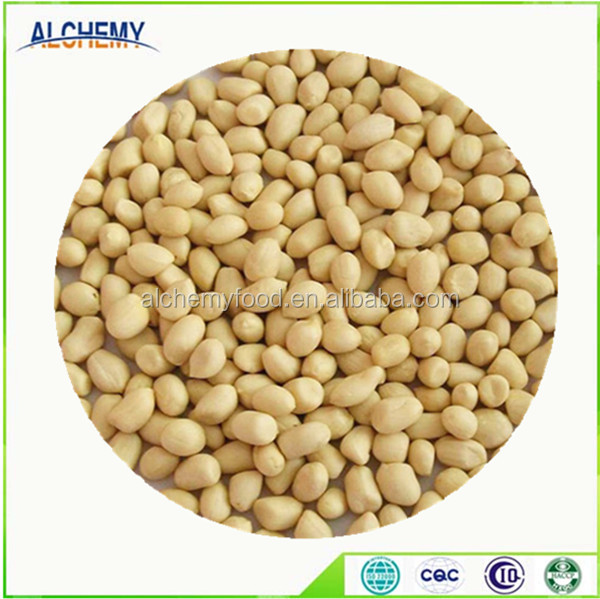 Direct factory artificial peanut