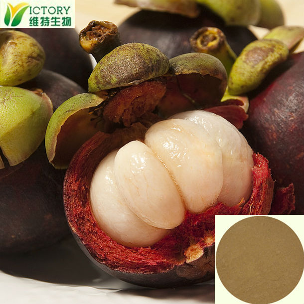 extraction of mangosteen juice
