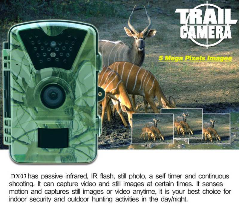 "12MP 2.4"" TFT Camera HD Scouting Night Vision 24pcs IR LED 90 Degree Wide Angle Lens Photo Traps Hunting Camera"