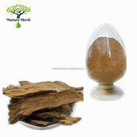 Wholesale Organic Powder Tuhuo Angelica Extract