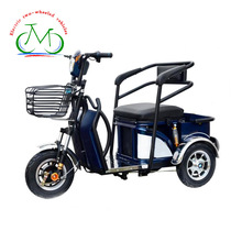 2018 fashion popular 48v 500w adult cool 3 wheel electric sport motorcycle for passenger