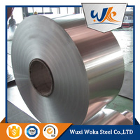 SUS 316L stainless steel stripes