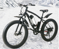 350W High speed brushless Hall motor electric fat bike
