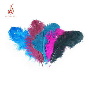 60-65cm dyed ostrich feather for Carnival Costumes Design decoration