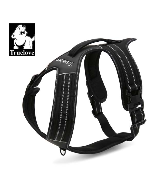Hot selling fashionable dog harness!