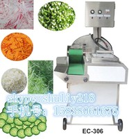Multi-functional fruit and Vegetable Cutter Machine