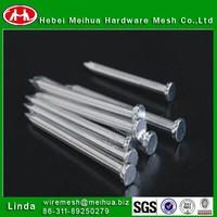 Cheap common nail/roofing nails/double headed nail with high quality