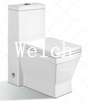 8029 one piece shower toilet
