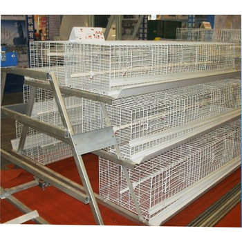 The New type and superior fancy pigeon cages for sale