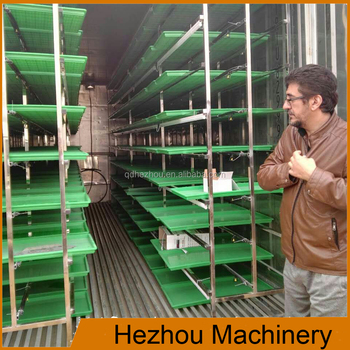 cow farm equipment hydroponic fodder growing machine/animal green fodder grow system
