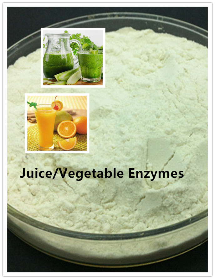 Fruit/Vegetable Juice Enzyme/Pectinase/Cellulase/Xylanase/Amylase