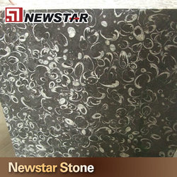 Chinese special granite black fossil dream circle Chinese granite price