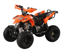 2017 New kawasaki quad atv 110cc plastic body for sale in china