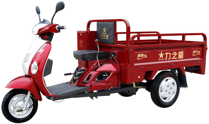 110 CC Heavy Load Tricycle /Three Wheel Motorcycle