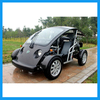 2 Person Electric Hunting Golf Cart