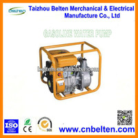 Agricultural Irrigation Hand Manual Water Pumps For Sale