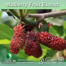 Nutritional Supplement Mulberry Fruit Extract,Pure Mulberry Extract Anthocyanidins Powder,Mulberry P.E.
