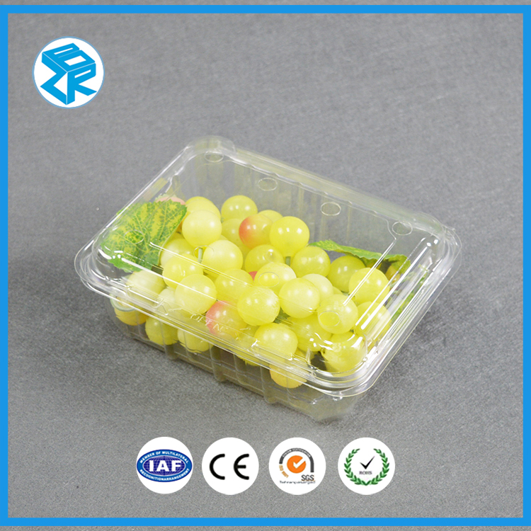 SZ2-500A foldable salad fruit container <strong>plastic</strong> pp food <strong>cases</strong> fast takeaway box