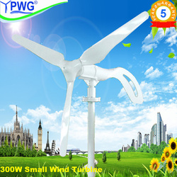 Brand new 300W wind generator for marine&land with 3 PCS blades+wind/solar hybrid controller(LCD display).