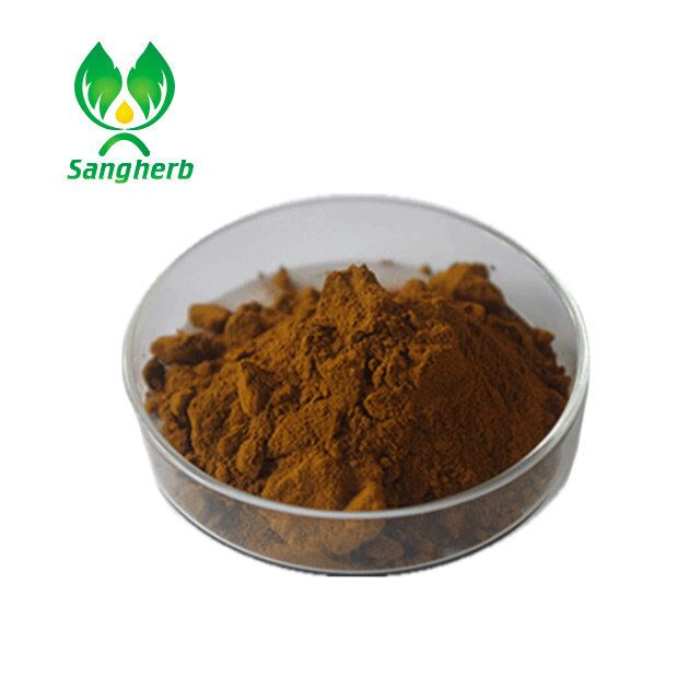 Supply pure Fucoidan 5%-98% Seaweed Extract Wakame Kelp Extract