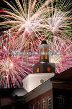 Guangdong Fireworks&Firecracker Supplier
