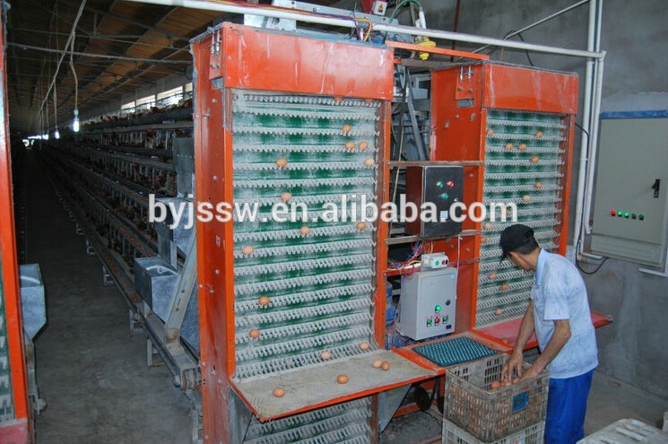 Layer Chicken Cages Poultry Farm China Supplier