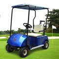China OEM factory one seater golf cart DG-C1 with CE