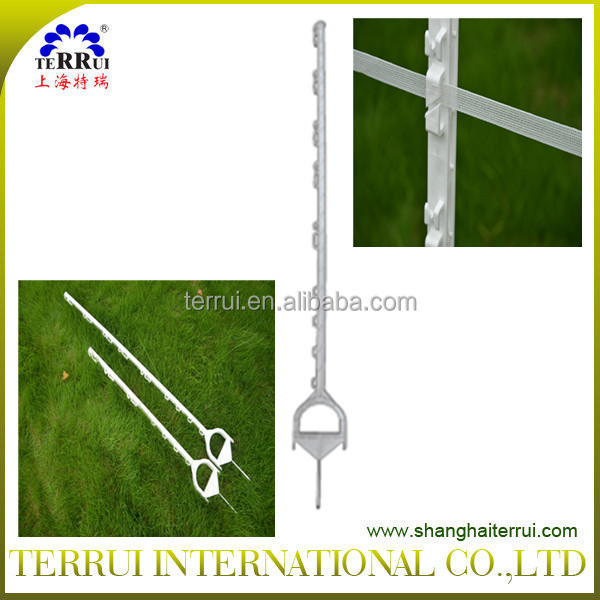 Plastic White step-in posts with loops used for poly tape and poly wire