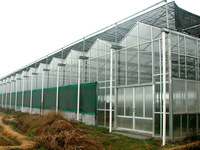 Glass greenhouse structure for sale