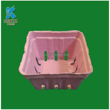 Paper pulp molded eco-friendly fruit packaging tray, container