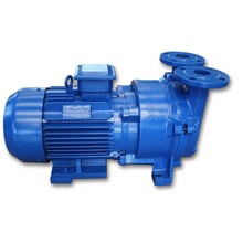 2FV2 Series Small Liquid Ring Vacuum Pump Water Ring Pump Vacuum Pump