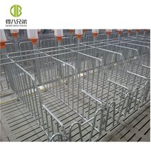 2019 popular gestation crate pig farm use hot galvanized sow crates