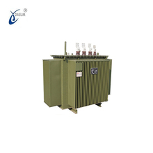 13.8kv to 220v 200kva 300kva Power Distribution Transformer with Copper