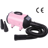 CHUNZHOU 2200W Innovative Pet Dog Hair Dryer Blower Low noise AS-2400
