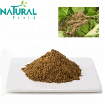 50% Natural Organic Extract Polygonum Multiflorum Powder