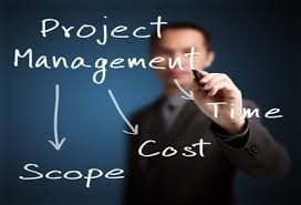 Project Management around Dutch IT market