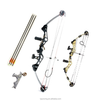 M107 hunting compound bow arrow set hunting archery with stabilizer and carbon arrows 40-50lbs camo black color china wholesale