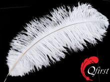 Best sale plumage wholesale cheap bleached white ostrich large drab feathers