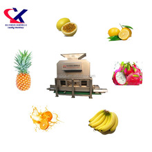 Banana Peeling Equipment Fruit Jam Processing Line 3TH Banana Pulper Machine