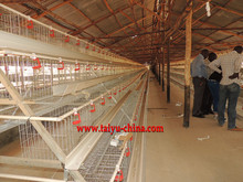 chicken coop hen house bird cage with automatic drinking system